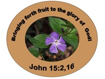 Reve' M. Pete Ministries, Inc. - Bringing forth fruit to the glory of God!